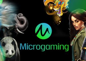 Sejarah Slot Casino Microgaming